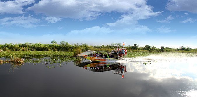 Exploring America's Wetland - Everglades Holiday Park