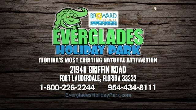 Host Your South Florida Corporate Event at Everglades Holiday Park