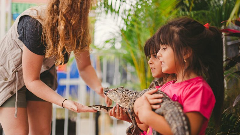 Everglades Holiday Park is the Perfect Spot for Afterschool Activities