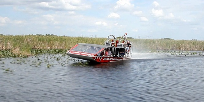 Three Prime Locations You'll Want to See on Your Airboat Ride  - Everglades Holiday Park