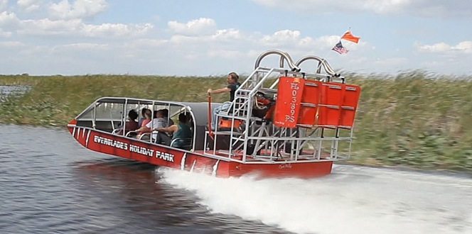 Guided Airboat Tours – What You Can Expect on Your Adventure   - Everglades Holiday Park