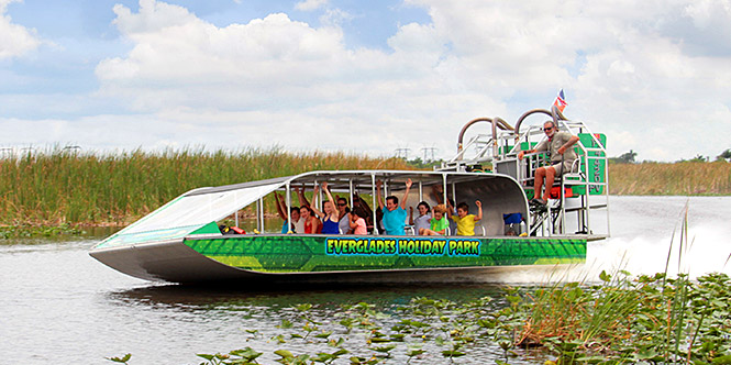 alligator tour guide, everglades tour guide