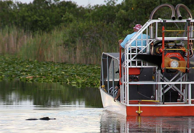 best-Everglades-tour