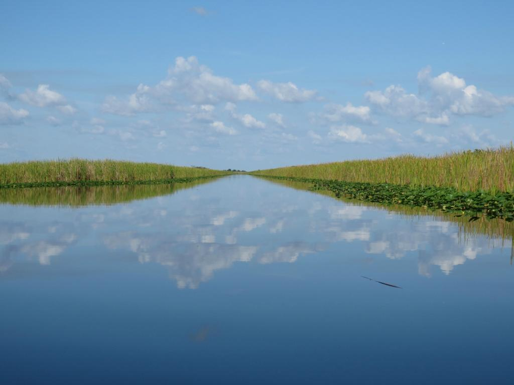 south florida beaches-everglades