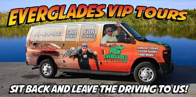 Everglades Tour | Everglades VIP Tours | Everglades Holiday Park