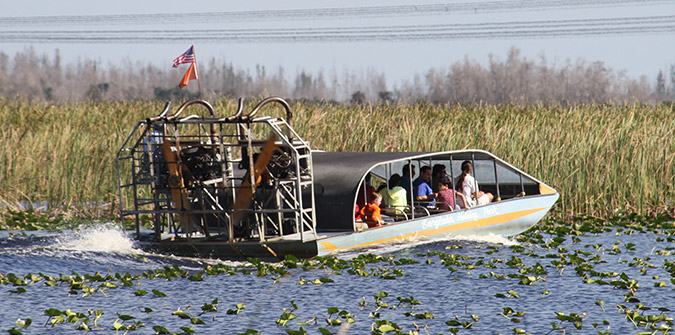Why Airboat Tours and Alligators Go Together - Everglades Holiday Park