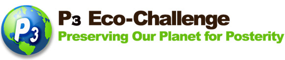 Broward County School's P3 Eco Challenge logo