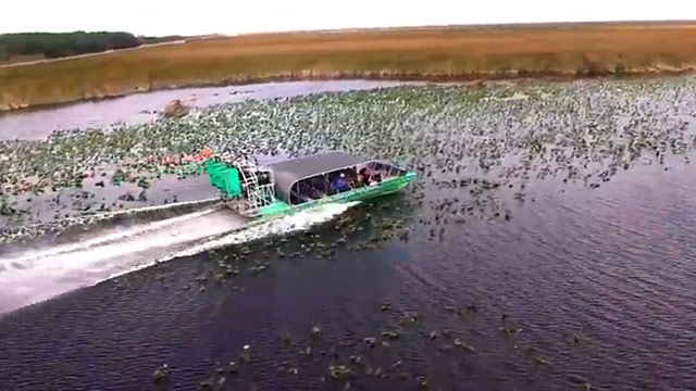 Swamp Thing airboat tour video thumbnail image at Everglades Holiday Park