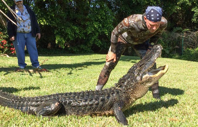 The Gator Boys Live to Rescue - Everglades Holiday Park