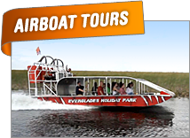 Everglades Airboat Tours | Ft Lauderdale Airboat Tours | Miami Airboat Tours