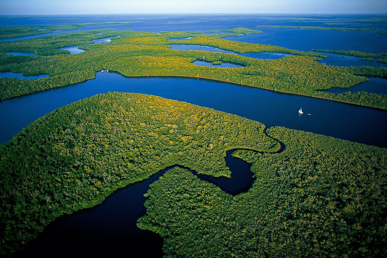 Florida Everglades from the Air